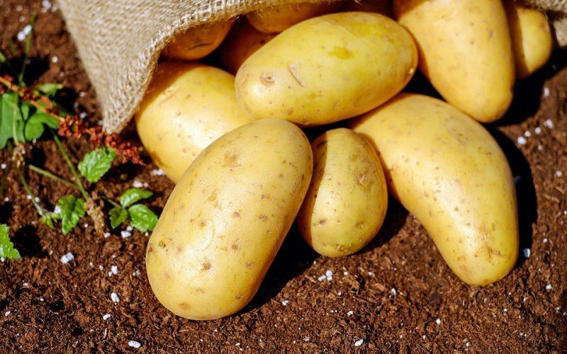 potatoes-1585075_960_720